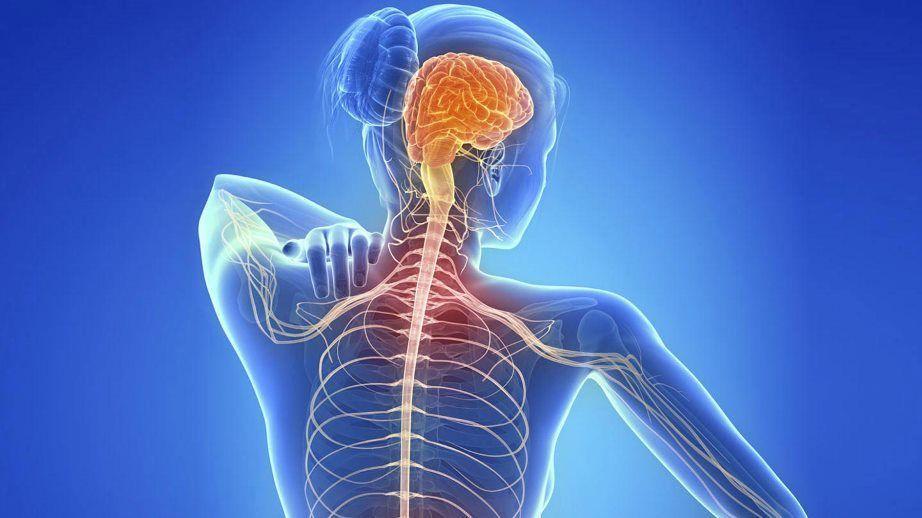La Esclerosis Múltiple