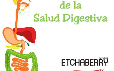 La importancia de una buena salud digestiva